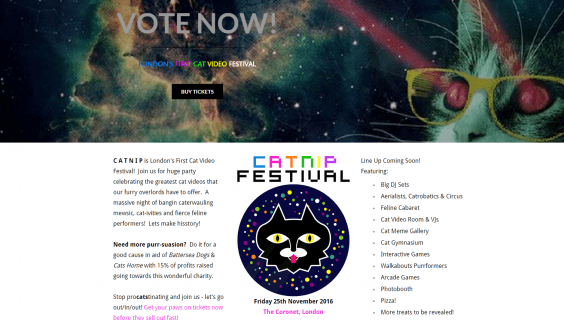 Catnip Festival 2016 will be the first cat-themed festival ever